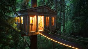 tree house forest house outdoors wallpapers hd desktop and