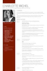 Digital Marketing Resume Sample by Directeur Senior Exemple De Cv Base De Données Des Cv De Visualcv