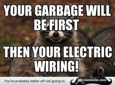 Meme Generator Raccoon - resized evil plotting raccoon meme generator rude customer asked