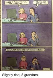 Grandma Computer Meme - how about my willy need a pass word for the computer computer says