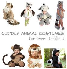 Raccoon Halloween Costume Halloween Costume Guide Cuddly Animal Costumes