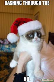Grumpy Cat Meme No - dashing through the no meme grumpy cat christmas 16532