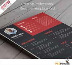 Best Resume Formats 40 Free by Extraordinary Design Example Of A Professional Resume 6 The Megan