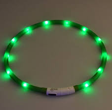 light up collar amazon amazon led dog collar light up night safety usb rechargeable