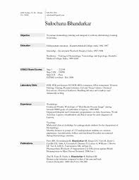 how to format a resume in word how to format resume in word awesome europass cv template discreetly
