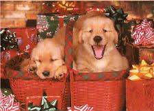 golden retriever puppies ebay