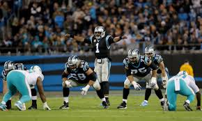 carolina panthers bold predictions for the rest of 2017 regular
