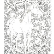 livre coloriage adulte anti stress a4 chevaux 100 coloriages