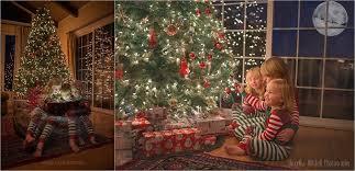 capturing the magic of christmas u2014 santa rosa photographer