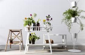 create an indoor garden party ikea share space