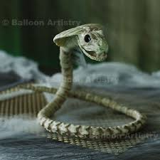 poseable skeleton 39 horror cobra snake serpent viper poseable skeleton