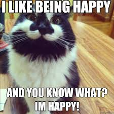 Happy Place Meme - i like being happy and you know what im happy overly happy cat