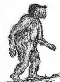 bigfoot mystery ink