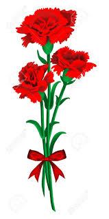 top 94 carnation flower clipart best clipart blog
