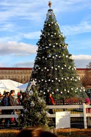here and there the national christmas tree