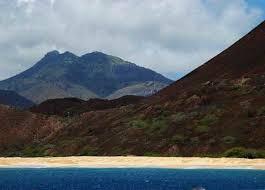 imagenes tortugas verdes lugares remotos ascensión la isla de las tortugas verdes