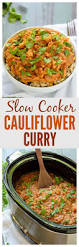 569 best slow cooker recipes images on pinterest crockpot