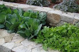 spring garden solutions retaining walls