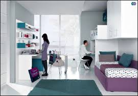 bedroom contemporary decoration for pink theme girls teenage room