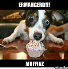 Muffin Top Meme - muffin by serkopat meme center