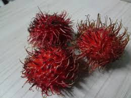one fruit two fruit red fruit spiky fruit true life i live