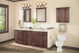 bathroom amazing bathroom cabinet above toilet decorating idea