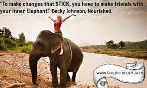 Elephant Meme - your inner elephant how to make changes that stick we laugh we