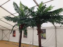 21 best artificial palm tree hire images on artificial