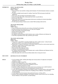 how to make a resume exle excel vba developer resume sles velvet