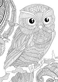 Free Owl Adult Coloring Pages To Print Kids Coloring Coloring Pages Owl
