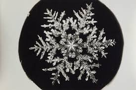 snowflake bentley camera the pioneering snowflake photographs of a young obsessive new