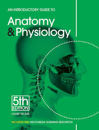 Anatomy And Physiology Pick Up Lines An Introductory Guide To Anatomy U0026 Physiology Amazon Co Uk