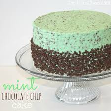 mint chocolate chip cake dip it in chocolate