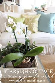 Cottage Style Decor by 124 Best Summer Style Coastal Decorating Ideas Images On