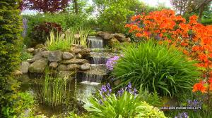 Image Flower Garden by Relaxing Garden Dvd Relax With A Amazing Flower Garden With