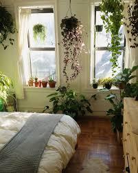 Garden Bedroom Ideas Plants For Room Best 25 Bedroom Plants Ideas On Pinterest Bedroom