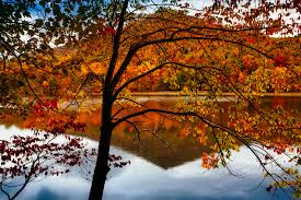 Autumn Colors Best Places To See Fall Colors In The Blue Ridge Mountains