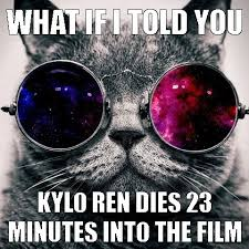 Morpheus Cat Meme - star wars spoiler warning i love funny cats pinterest cat