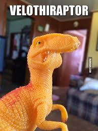Velociraptor Meme - velothiraptor humoar com