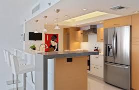 Modern Condo Kitchen Design 20 Dashing And Streamlined Modern Condo Kitchen Designs Home