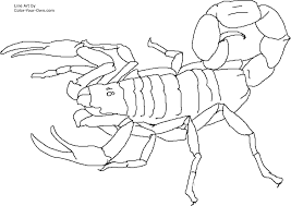 geography blog scorpion coloring pages