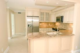 Home Decorators Collection Kitchen Cabinets by 100 Small Condo Kitchens Small Home Remodels Home