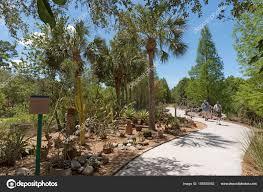 Largo Botanical Garden Cactus Garden T The Florida Botanic Garden In Largo Fl Usa Stock