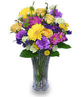 Purple Carnations Carnation The Mothers Day Flower Carnations Beauty