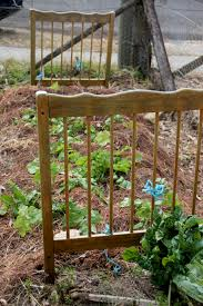 garden tips from local growers the blue mountains food co op