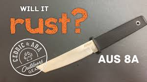 will stainless steel rust will it rust stainless steel testing aus8 carbon steel lc200n