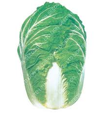 cuisine 騁rang鑽e cuisine 騁rang鑽e 3 images cabbage seeds co ltd cabbage