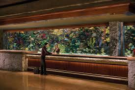 Fish Tank Reception Desk Mirage Resort U0026 Casino Deals U0026 Reviews Las Vegas Usa Wotif