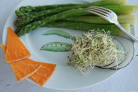 comment cuisiner la fenouil comment cuisiner la fenouil fresh fenouil germé facile hd wallpaper