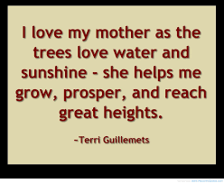 Prince Charming Love Quotes by I Love My Mother Flvs Inspiration Quote Inspiration